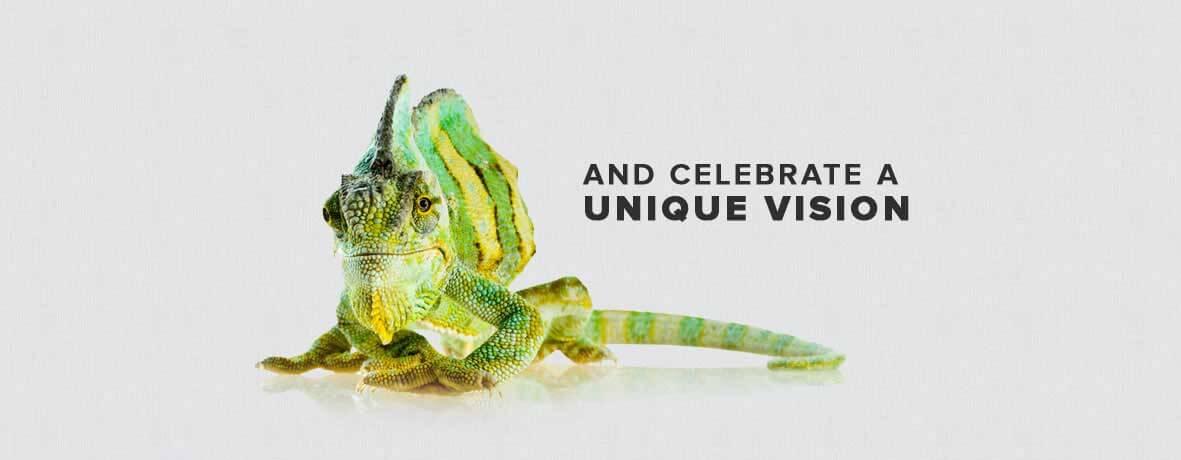 Celebrate a unique vision