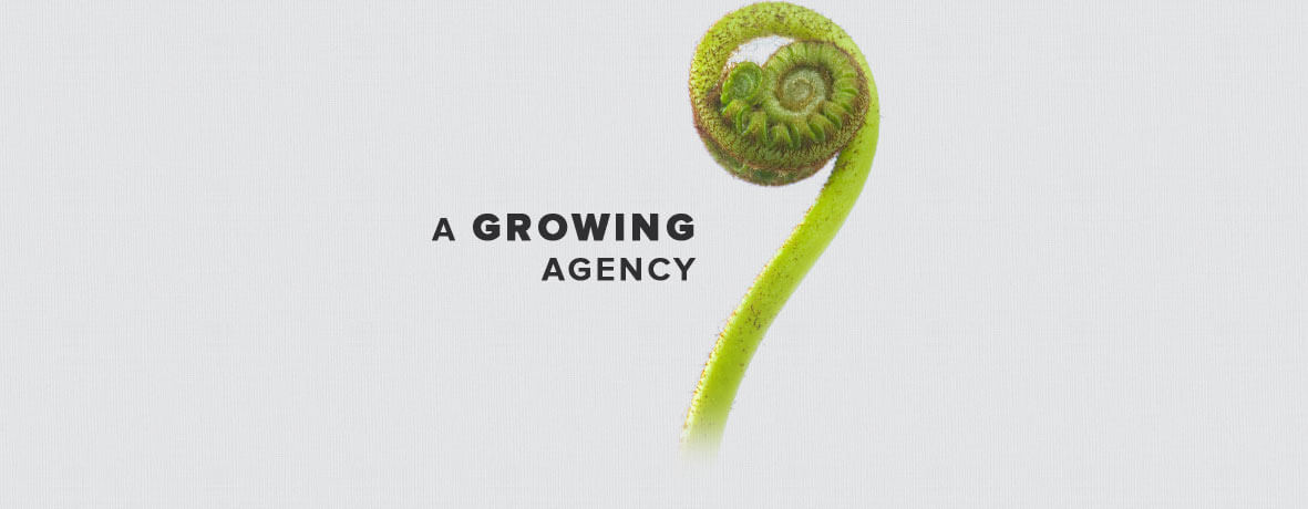 A growing interactive agency
